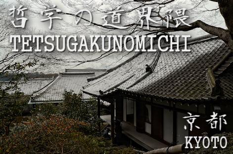 京都ぶらり 哲学の道3