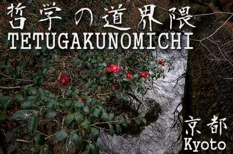 京都ぶらり 哲学の道