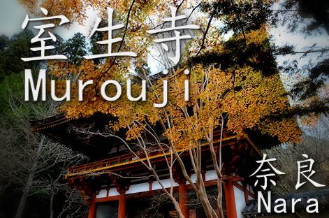 奈良ぶらり 秋の室生寺