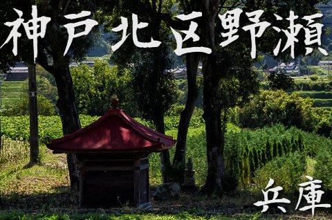 兵庫ぶらり 神戸北区野瀬